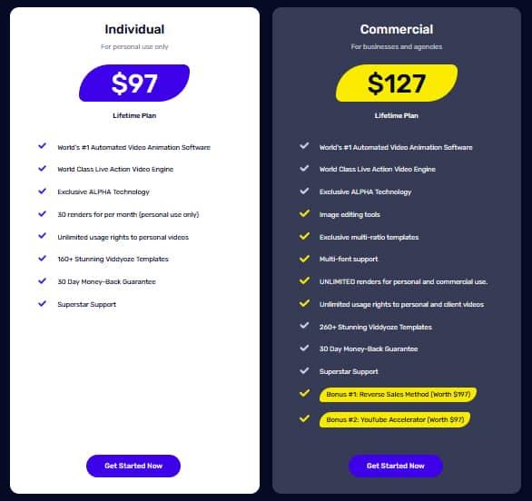 Viddyoze Pricing